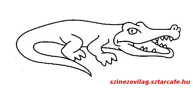 aligator-szinezo-01