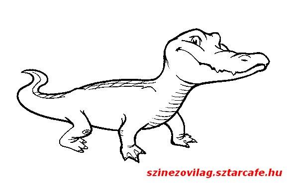 aligator-szinezo-05