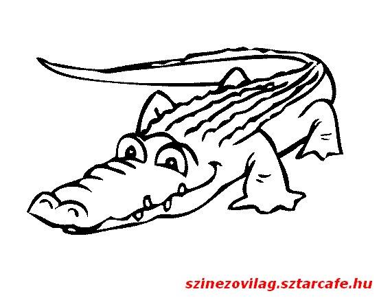 aligator-szinezo-09