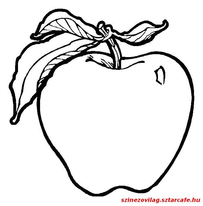 alma-szinezo-08