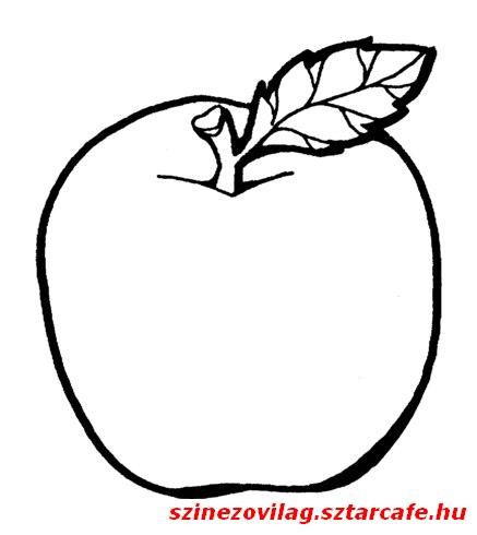 alma-szinezo-09