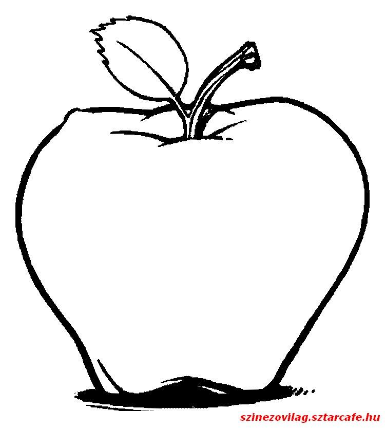 alma-szinezo-11